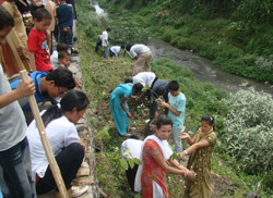 Youth are planting trees beside riverside